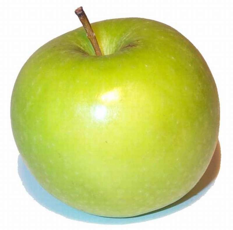 Post thumbnail of Первый плод